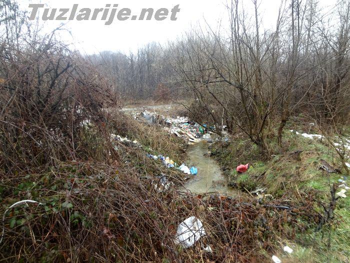 Prokletstvo Bosne
